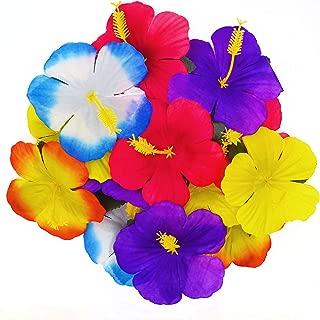 Best purple hibiscus flower Reviews