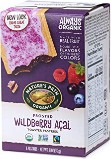 Nature's Path Frosted Wildberry Acai Toaster Pastries, Healthy, Organic, 11-Ounce Box