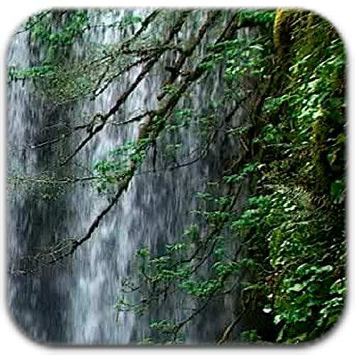 Curtain Waterfall Live Wallpaper