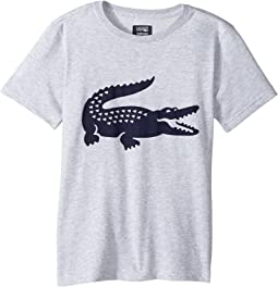 Lacoste Kids - Sport Croc Graphic Tee (Little Kids/Big Kids)