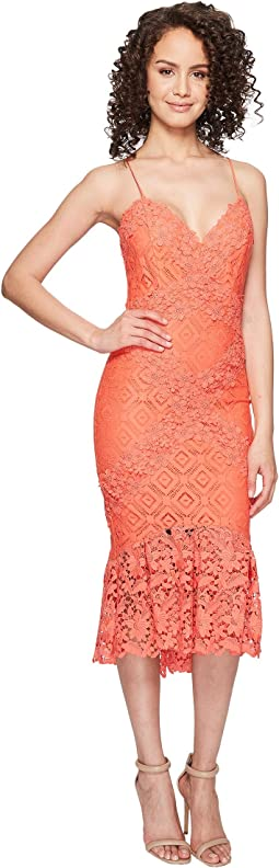 Nicole Miller - Leila Crochet Lace Cocktail Dress