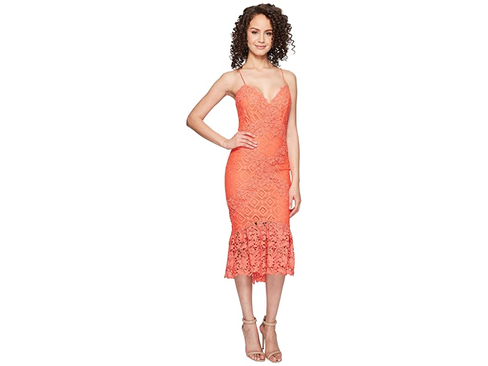 Nicole Miller Leila Crochet Lace Cocktail Dress (Coral Reef) Women