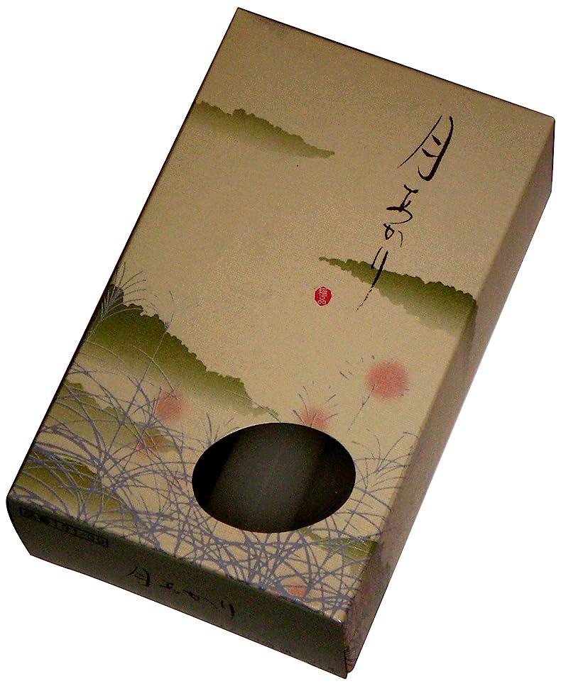 検査パトワ精通した東海製蝋のろうそく 月あかり 太4時間8本