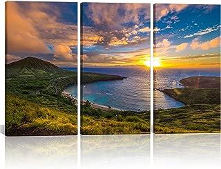 Best hawaiian framed art Reviews