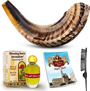 ساز شافر Shofar - ساز موسیقی رام Shofar Angels - هدیه شاخ از اسرائیل - کوثر یهودی و انجیلی شوفر - ساز مقدس سنتی برای مراسم مذهبی (12-14)