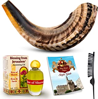 Shofar Horn Instrument – RAM Shofar Angels Musical Instrument – Horn Gift from Israel – Kosher Jewish and Evangelical Shofar – Traditional Holy Instrument for Religious Ceremonies (12-14)