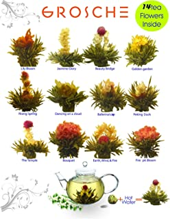 Best daily blooming flowers Reviews