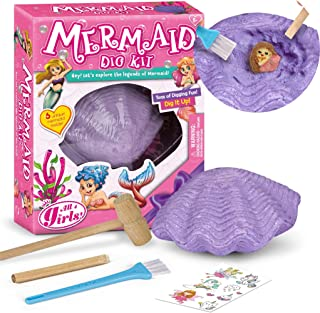Mermaid Dig Kit Rock Collection Excavation Kits Archaeology Paleontology Educational Science Gift for Girls and Boys