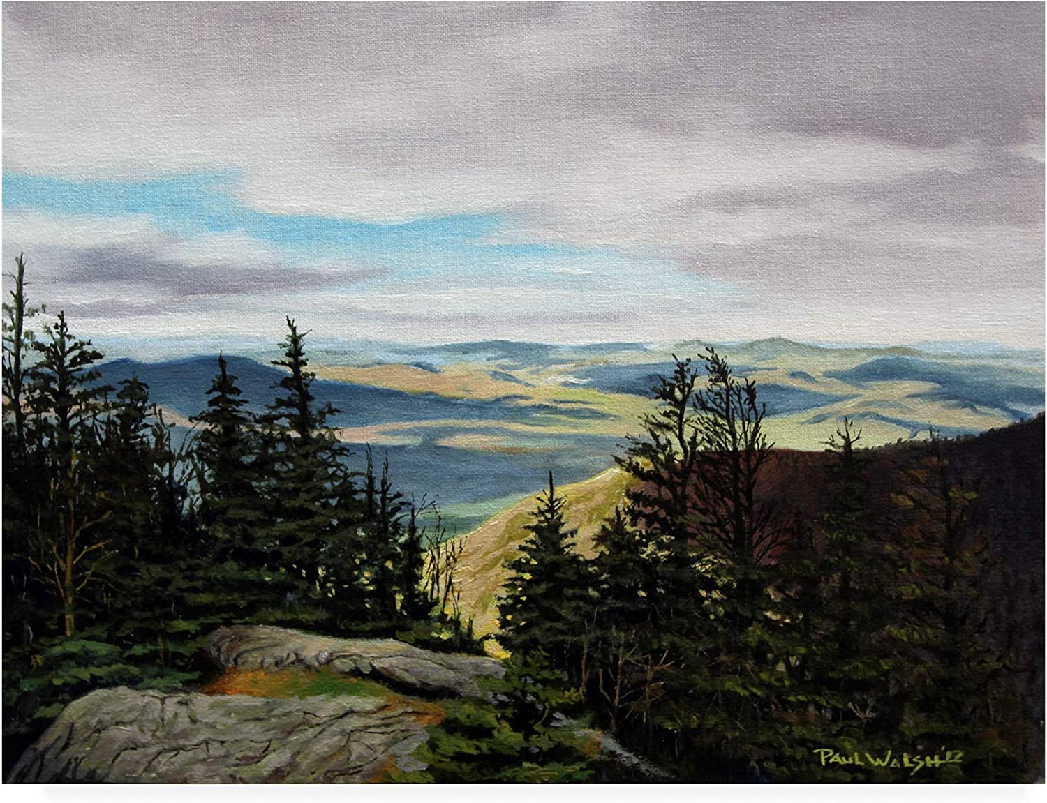 Trademark Fine Art New Hampshire Green by Paul Walsh, 14x19