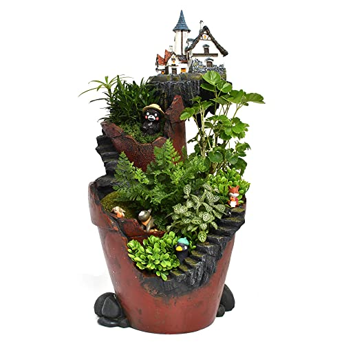Fairies Garden Containers Amazon Com