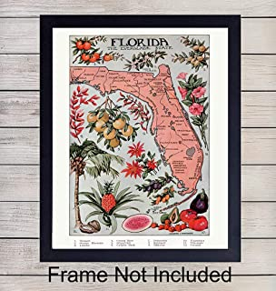 Florida Vintage Map - Unframed Wall Art Print - Great Gift for Geography Enthusiasts - Perfect for Classroom - Modern Chic Home Decor - Ready to Frame (8X10) Photo