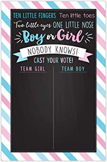 Baby Gender Reveal Party Game Voting Poster Board 11x17 Inches Blue and Pink Gender Reveal Party Supplies Ideas