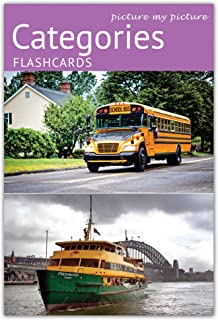 Picture My Picture Categories Flash Cards | 40 Language Development Educational Photo Cards | 5 Starter Learning Games | Speech Therapy Materials, ESL Materials