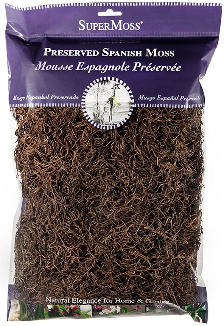 SuperMoss (26972) Spanish Moss Preserved, Coffee, 8oz (200 cubic inch)