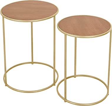 Round Nesting Coffee End Tables, Modern Furniture Decor Gold Metal Side Tables for Living Room Balcony Home and Office(Set of 2)