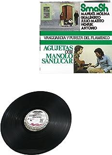 Pureza Y Vanguardia Del Flamenco