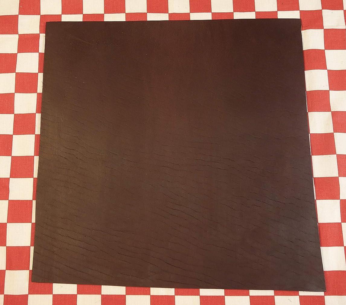 Horween Dark Brown Chromexcel Leather Hide Cut 6 oz. 12