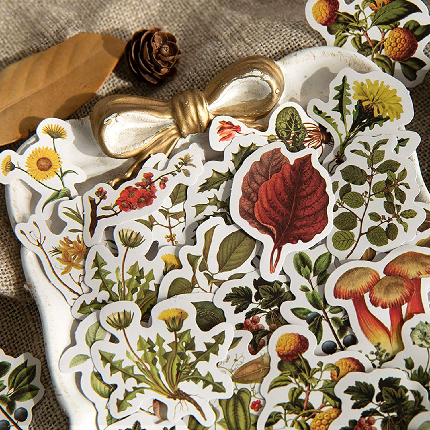 ZMLSED Vintage Natural Stickers 46Pcs Spring Forest Flower Mushroom Decorative Retro Decals Adhesive Aesthetic Trendy for Scrapbook Laptop Skins Album DIY Craft Daily Planner