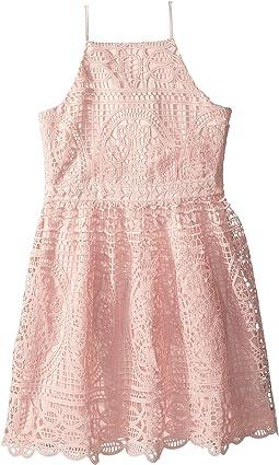 Bardot Junior Versailles Dress (Big Kids)