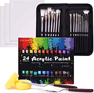 Acrylic Paint Set, 48 Piece Professional Painting Set, Includes 24 Acrylic Paints, 16 Painting Brushes with Case,Paint Kni...