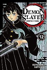 Demon Slayer T12 Format Kindle