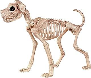 Best crazy bone dog Reviews
