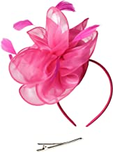 Feibao Fascinators Hut Damen Tea Party Stirnband Hochzeit Cocktail Blume Haarspange Derby Headwear