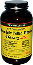 Y.S. Eco Bee Farms, Royal Jelly, Pollen, Propolis & Ginseng in Honey, 19.5 oz (552 g) - 2pcs