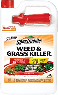 Spectracide Weed & Grass Killer2, Ready-to-Use, 1-Gallon