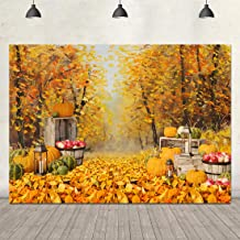 Thanksgiving Backdrop for Photography Fall Forest Photo Background 7x5ft Golden Autumn Pumpkin Harvest Fall Party Backdrop Adults Kids Portrait Photo Booth Props Newborn Birthday Party Decorations