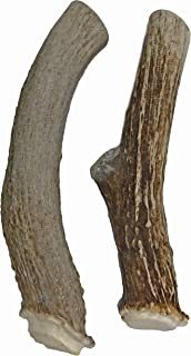 WhiteTail Naturals Premium Extra Large Deer Antlers for Dogs (2 Pack X Large)   All Natural Dog Chews   Extra Large Antler Bully Chew   Made in The USA