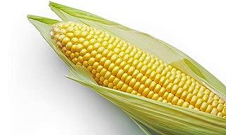 incredible sweet corn