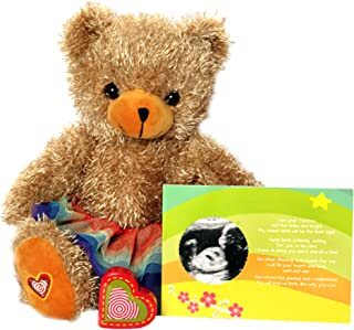My Baby's Heartbeat Bear - The Rainbow Baby Recordable Stuffed Animal Kit Includes 13