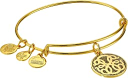 Color Infusion Path Of Life Bangle