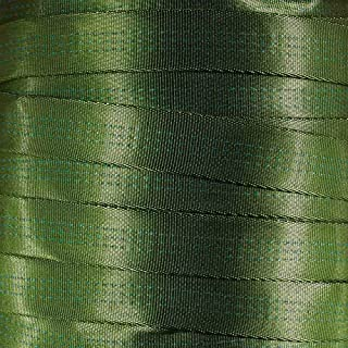 West Coast Paracord 1-Inch Tubular Nylon Webbing – Premium Heavy Duty Lightweight with Breaking Strength of 4000 Pounds – ...
