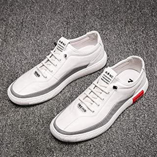 One Foot Men's Shoes Summer Breathable 2019 New Net Red White Shoes Men's Tide Shoes Wild Trend Casual Shoes (Color : White, Size : 42)