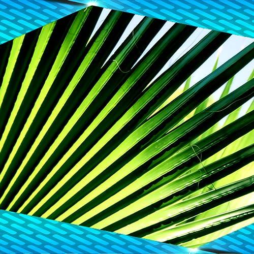 Palm Photo Collage