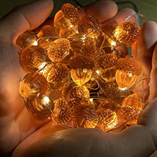 JASHIKA 3D Twinkle Acorn Fall Decorations Harvest String Lights 10ft Copper Wire 30 LEDs Battery Powered with Timer Remote...
