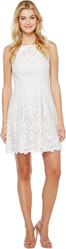 Giselle Lace Fitand Flare Dress