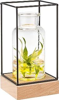 Gadgy® Jarrón decorativo con luz led | Florero vidrio con Base de madera natural y diseño de metal l 22.5 x 10.8 x 108 cm