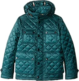 Burberry Kids - Halesworth Quilted Jacket (Little Kids/Big Kids)
