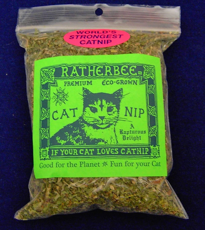 Ratherbee Premium EcoGrown Catnip Bulk 1 oz bag by Ratherbee