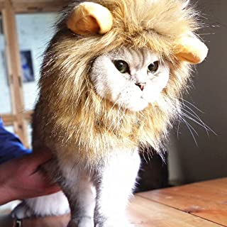 Idepet Dog Cat Lion Mane - Realistic Funny Lion Mane for Dogs - Complementary Lion Mane Hat for Dog Cat Costumes,Halloween...