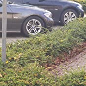 Eibach E10 20 014 01 22 Tieferlegungsfedern Pro Kit Auto