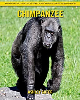 Chimpanzee: Fascinating Facts and Photos about These Amazing & Unique Animals for Kids