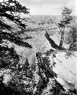 Grand Canyon C1906 Na View Of The Grand Canyon In Arizona From The Near Bridge At Grand View Hotel Photographed C1906 Post...
