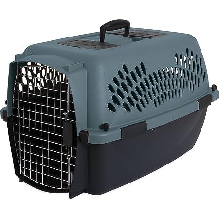 Aspen Pet Porter Travel Kennel