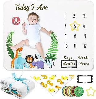 swaddler giraffe milestone blanket Milestone Blanket Baby Milestone blanket personalized baby blanket baby blanket 5031 baby shower