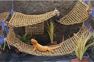 Penn Plax Corner Lizard Lounger 27x32 cm