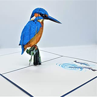 BC Worldwide Ltd carta pop-up 3D fatta a mano Kingfisher bird compleanno anniversario di matrimonio San Valentine festa de...